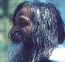 The Beatles, the Maharishi, and Meditation